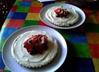 Katharine's Gluten Free Key Lime Pies