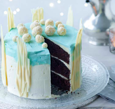 Benjamina's Winter Wonderland Cake