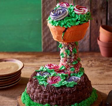 Freya's Flower Potty Cake