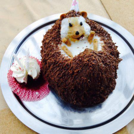 Outstanding Hedgehog Birthday Cake The Great British Bake Off Funny Birthday Cards Online Inifodamsfinfo