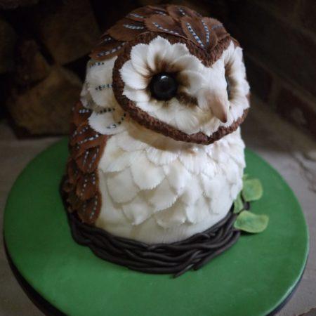 Barn Owl Cake The Great British Bake Off